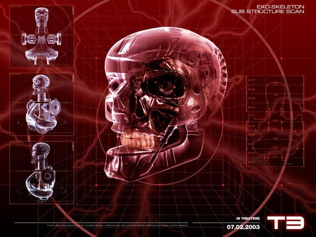 File:Terminator-skull of the t-850.jpg