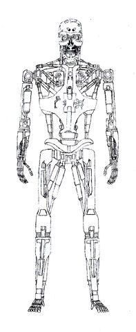 File:T-888 v1 Endoskeleton.jpg
