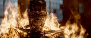 Tg-originalt800-film-endoskeleton-012