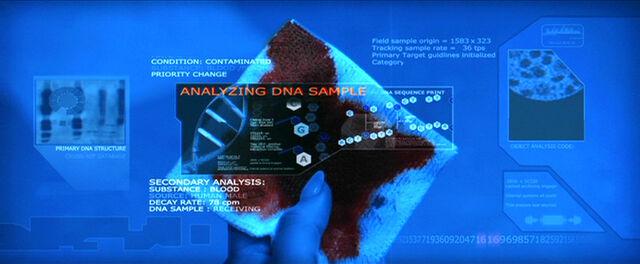 File:T-X DNA.jpg