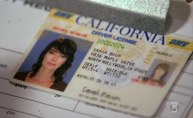 File:SCC 102 sarahs fake driver license.jpg