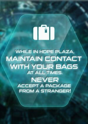 Hope Plaza bags