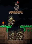 Terraria Zombie Pit (Simple)