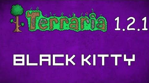 Black Kitty - Terraria 1.2