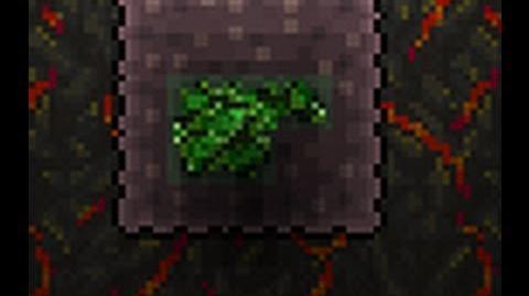 Terraria How to make a Chlorophyte farm