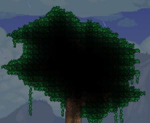 File:Giant tree.jpg