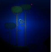 Underwater jungle trees