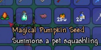 Magical Pumpkin Seed