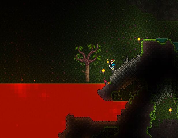 File:Rich mahogany right above lava.jpg