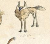 Imagewolfhawk