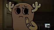 Penny Fitzgerald on The Shell