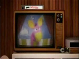 Daisy The Donkey Show