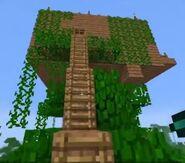 Koots tree