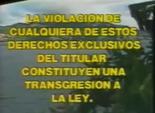 Videovisa 1991 g