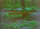 Videovisa 1989 e