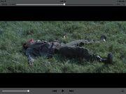 Dead d5 male