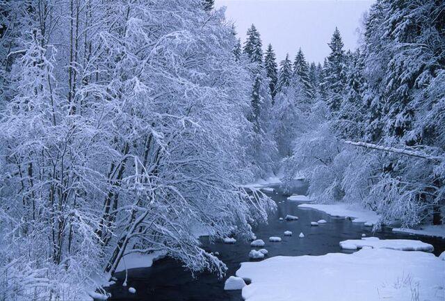 File:Winter-snow-landscapes.jpg