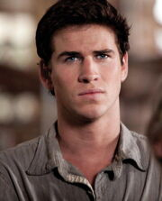 Gale watching