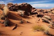 Desert1