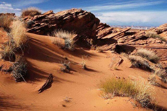 File:Desert1.jpg