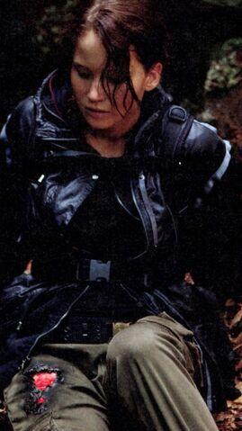 File:354px-Katniss burn.jpg