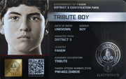 District 3 Tribute Boy ID Card