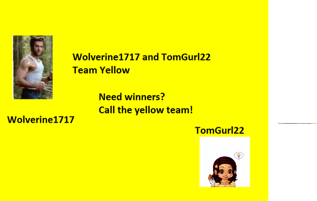 File:Yellow team banner.png