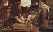 Ripper katniss hob