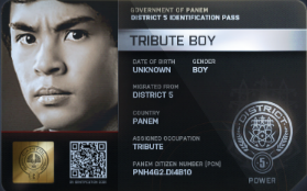 File:District 5 Tribute Boy ID Card.png