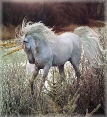 File:Unicorn8.jpg