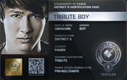 District 8 Tribute Boy ID Card 2