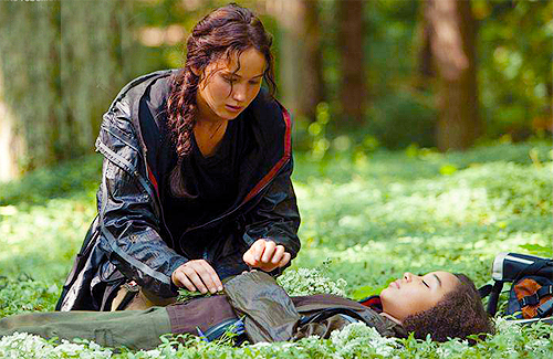 File:THG-stills-the-hunger-games-movie-29947816-500-325.png