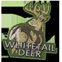 Whitetail deer badge