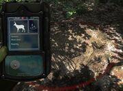 Huntermate bedding muledeer