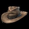 Cowboy hat 01