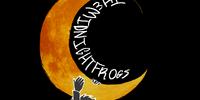 TheMidnightFrogs