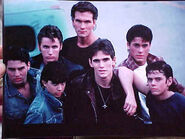 The-Outsiders-the-outsiders-1136436 429 322