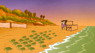 S6E15.192 Baby Sea Turtles are on the Move