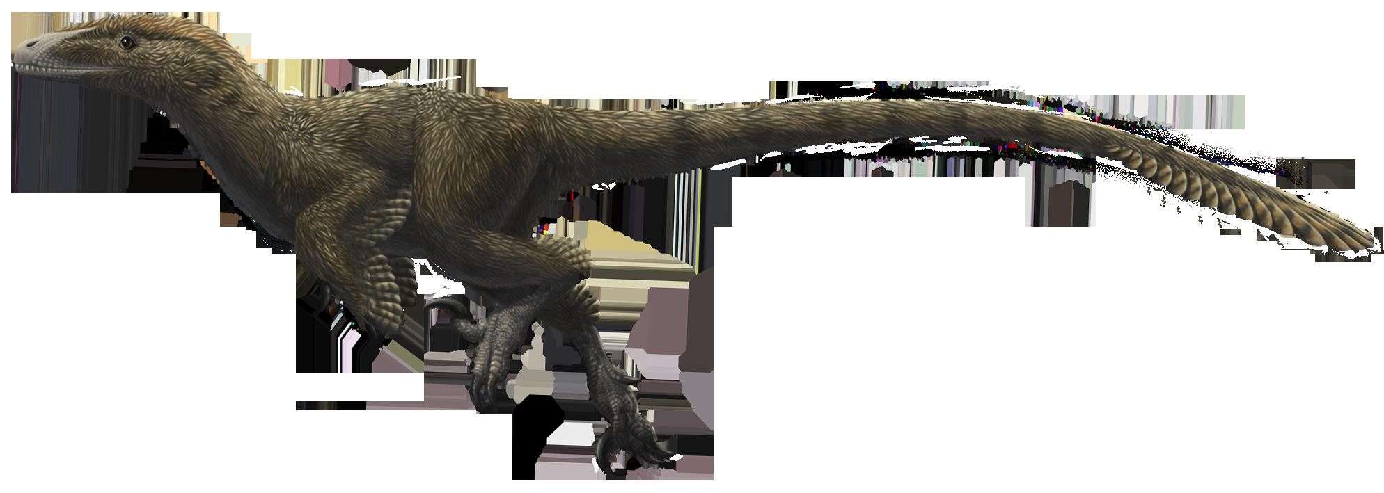 dromaeosauridae theropods wiki fandom powered by wikia
