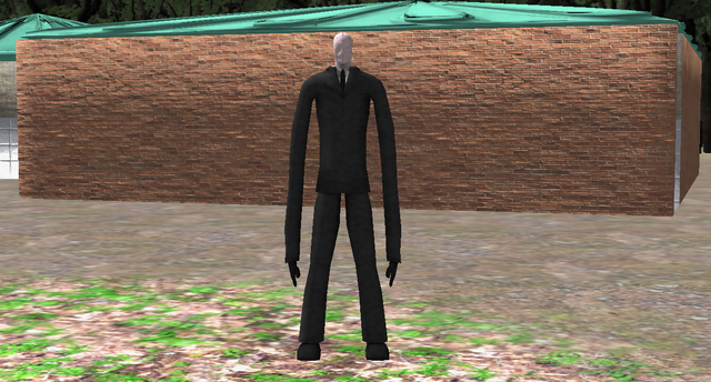 File:Slender The Eight Pages Daytime.png