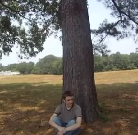 File:Jay under a tree.png