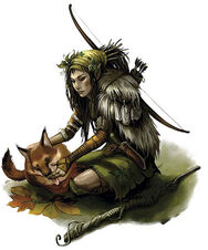 Wood Elf Ranger