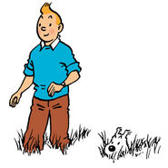 About-tintin-snowy