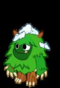 Evergreen Teen