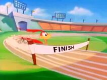 AcmeAcresSummerOlympics-LittleBeeperAtTheFinishLine