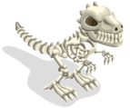Skeleton adult@2x