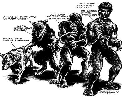 TMNT&OS mutation diagram