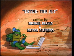 Enter The Fly 1