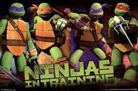 Teenage-mutant-ninja-turtles-profile-736750