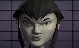 Karai paint finished